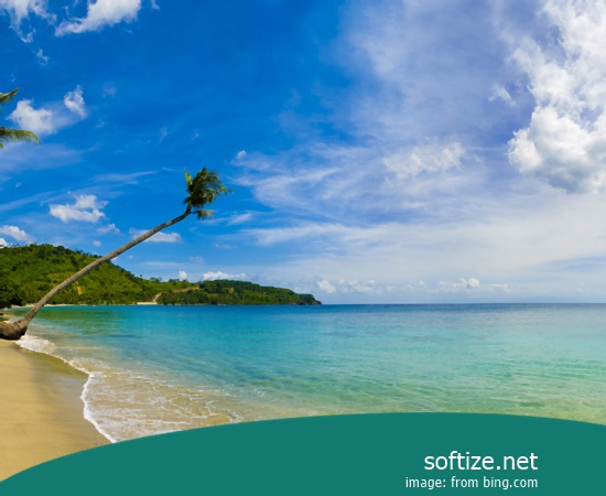 Panorama of an overhanging palm tree at Nippah Beach on tropical Lombok Island, Indonesia, Southeast Asia, Asia